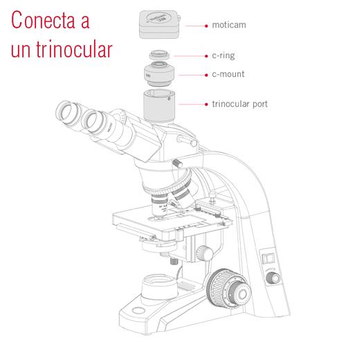 conecta a un trinocular