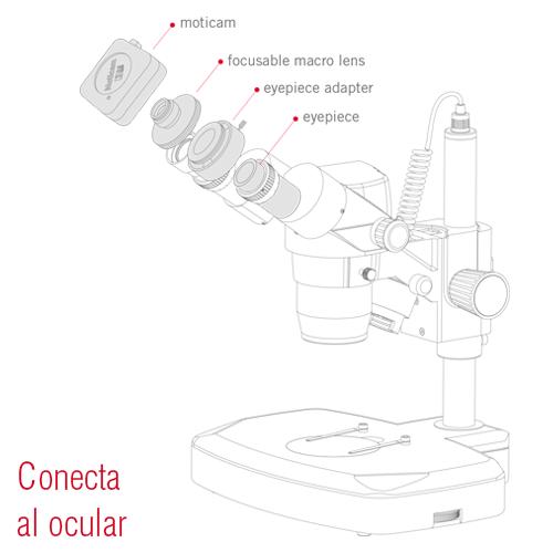 Conecta al ocular